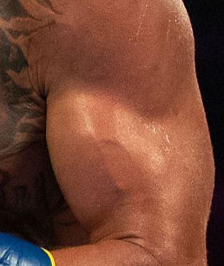 Picture of Vasyl Lomachenko muscles