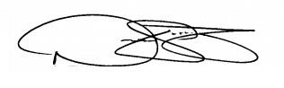 Nate Schierholtz signature