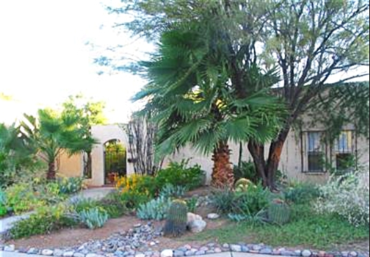 Matt Grevers house Tucson Arizona - home pictures